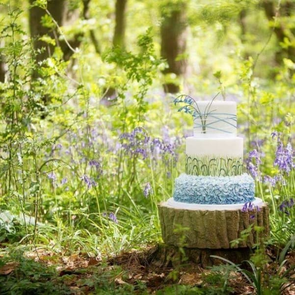 Bluebell cake (HayleyRuth Photography)